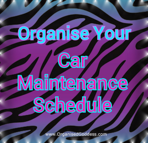 Organise Your Car Maintenance Schedule free download